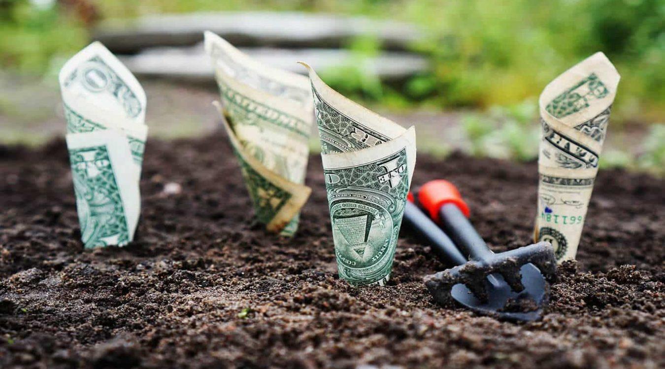 Vad-investerar-Lysa-och-Opti-i-för-tillgångar